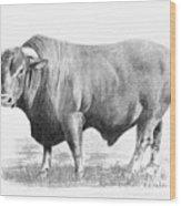 Santa Gertrudis Bull Wood Print