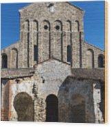 Santa Maria Assunta Wood Print