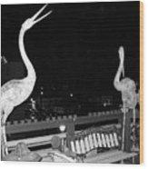 Santa Monica Birds Eye View Wood Print