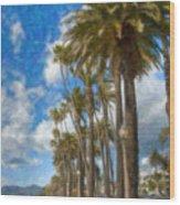 Santa Monica Ca Palisades Park Bluffs  Wood Print