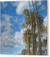 Santa Monica Ca Palisades Park Bluffs Palm Trees Wood Print