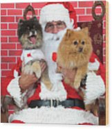 Santa Paws With Two Dogs Wood Print