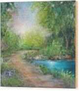 Santa Rosa Creek Path Wood Print