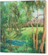 Santa Rosa Creek Wood Print