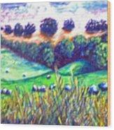 Santa Rosa Plateau Wood Print