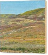 Santa Ynez Mountains Wildflowers Wood Print