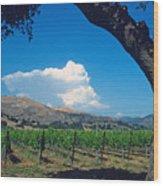 Santa Ynez Vineyard View Wood Print
