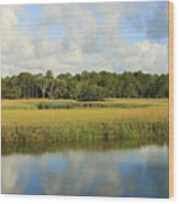 Sapelo Marsh Wood Print
