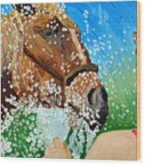 Sara Washes Her Horse Wood Print