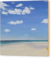 Sarasota Beach Wood Print