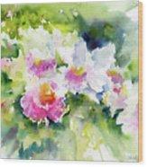 Sarasota Orchids Wood Print