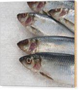 Sardines On Ice Wood Print by Jane Rix