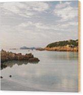Sardinian Coast I Wood Print