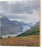 Saskatchewan Glacier In Canada Wood Print