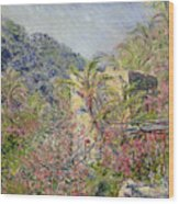 Sasso Valley Wood Print