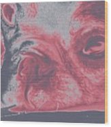 Sassy Red Dog Wood Print
