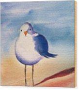 Sassy Seagull Wood Print
