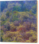 Saturated Forest Wood Print