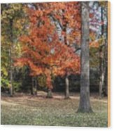 Saturday Here In The Park Wood Print