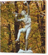 Satyr In Luxembourg Garden Paris France Wood Print
