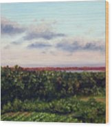 Saude Creek Sunset II Wood Print