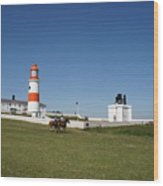 Souter Lighthouse And Foghorn. Wood Print