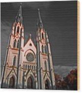 Savanna Georia Church Color Infrared 74 Wood Print