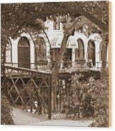 Savannah Arches In Sepia Wood Print