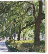 Savannah Benches Wood Print