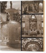 Savannah Landmarks In Sepia Wood Print