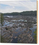 Savannah River At Evans Wood Print