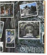 Savannah Scenes Collage Wood Print