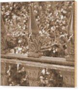 Savannah Sepia - Finials Wood Print
