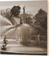 Savannah Sepia - Forsyth Fountain Wood Print