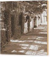 Savannah Sepia - Sunny Sidewalk Wood Print