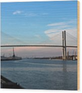 Savannah Span Wood Print