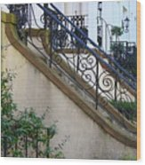 Savannah Stairs Wood Print