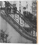 Savannah Stoops - Black And White Wood Print