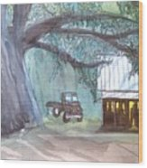 Savannas Backwoods Wood Print