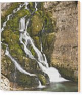 Savica Waterfall Wood Print
