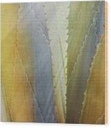 Sawtooth Agave Gold Light Wood Print
