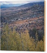 Sawtooth National Forest 1 Wood Print