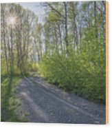Sawtooth Road Wood Print