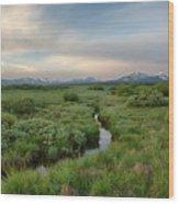 Sawtooth Valley II Wood Print