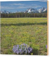 Sawtooths And Wildflowers Wood Print