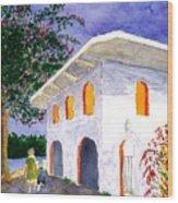 Sayilita Casa Wood Print