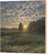 Scalloped Morning Skies Wood Print