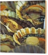 Scallops At Rialto Market In Venice Wood Print