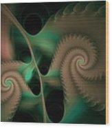 Scaloped Collossa Salvae Wood Print