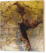 Scar Of Cordoba Wood Print